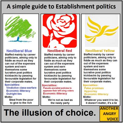 establishment politics