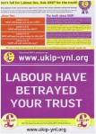 UKIP Leaflet RShow 2014