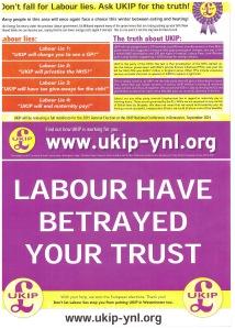 ukip-leaflet-rshow-2014